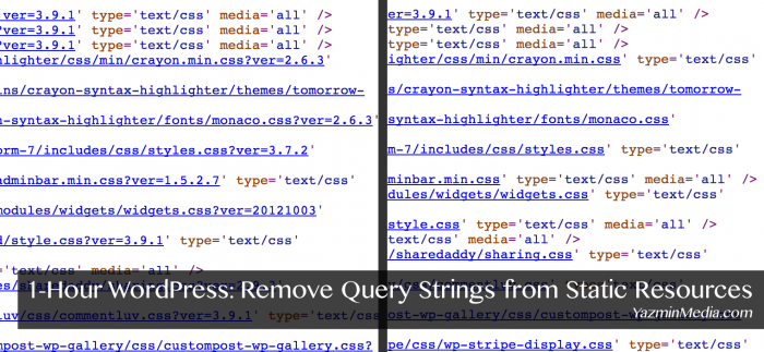 remove-query-strings-from-static-resources