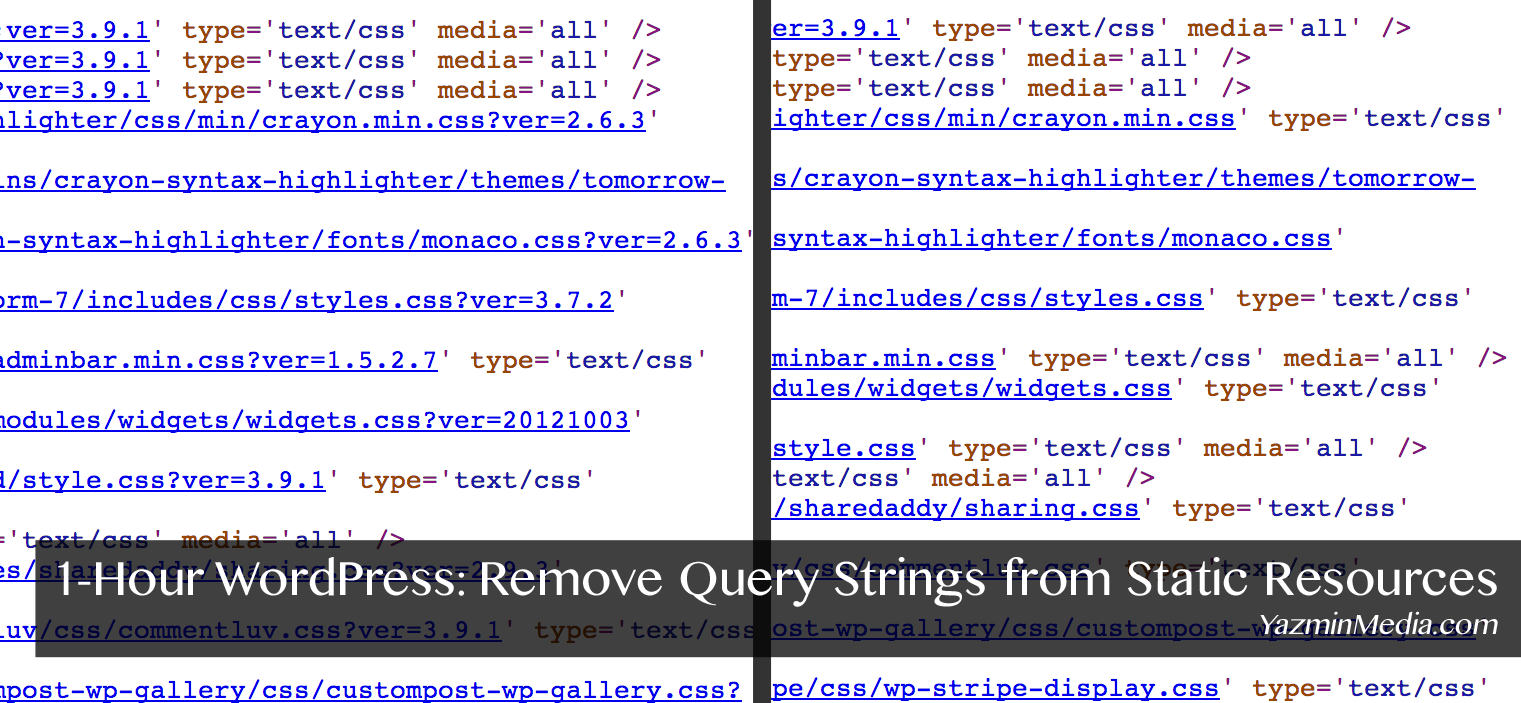 1-Hour WordPress: Remove Query Strings From Static Resources